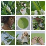PANTONE COLOUR OF THE YEAR 2017 | GREENERY 15-0343