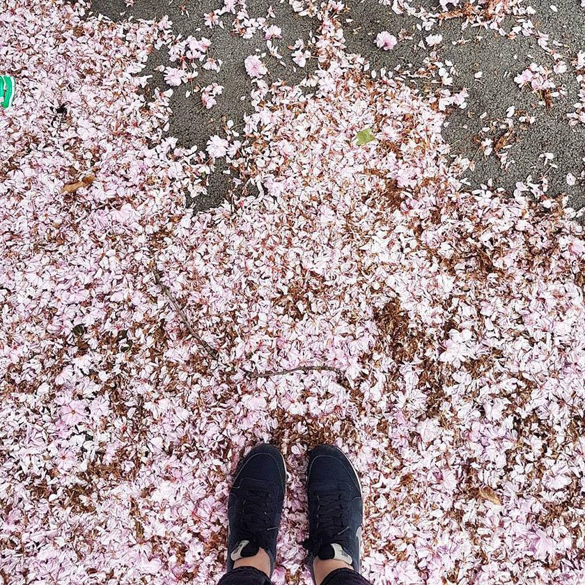 burmatex_first friday flooring favourites_May 2017_1