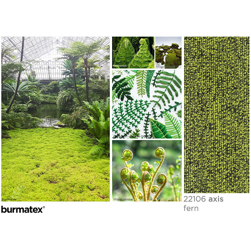 inspiration axis fern images. Garfield Park Conservatry Chicago, yumiko higuchi embroidery, moss