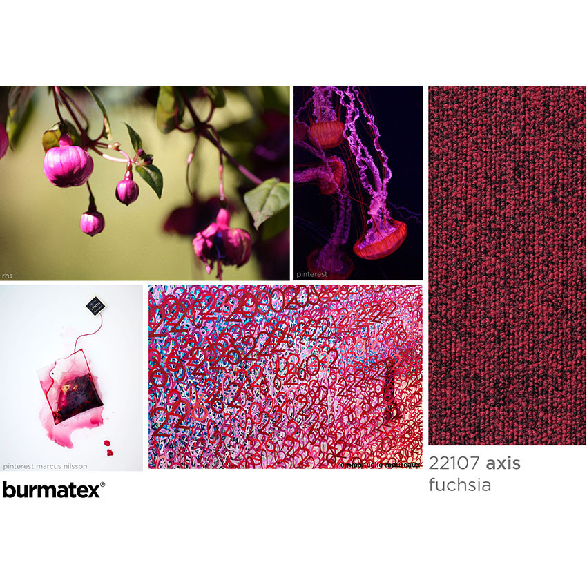 inspiration images axis fuchsia, jellyfish, emmanuelle moureaux foresto of numbers