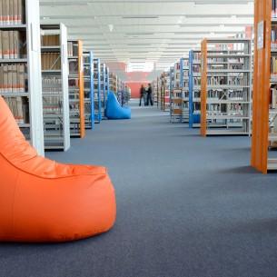 University Library - 4200 Sidewalk