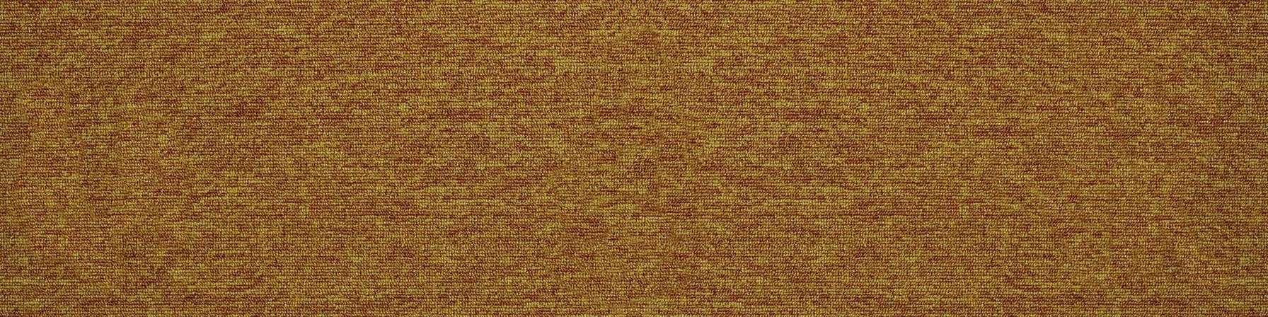 tivoli 21104 tortola gold carpet plank