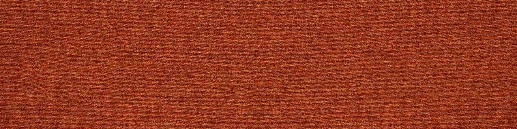 tivoli 21105 bahamas orange carpet plank