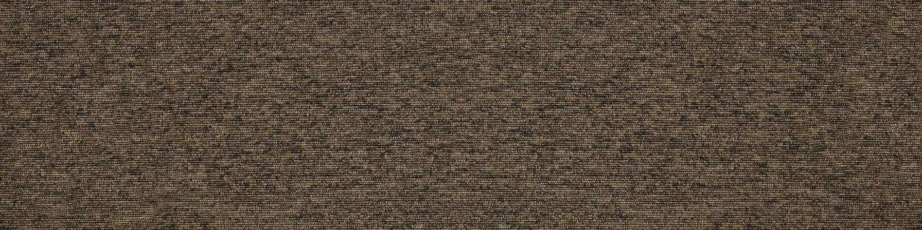 tivoli 21108 belize greige carpet plank