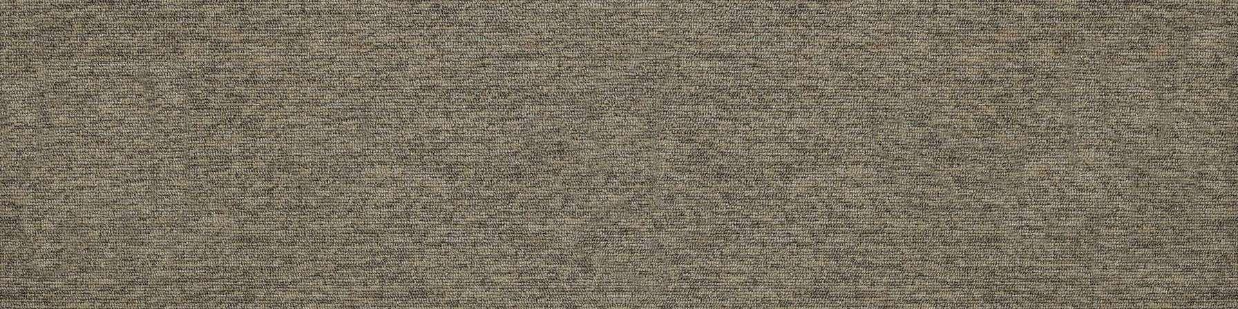 tivoli 21114 st martin sands carpet plank