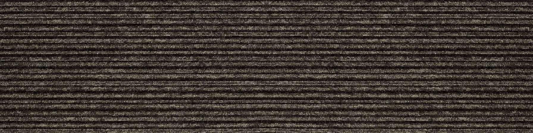 tivoli multiline 21203 melanesia grey carpet plank