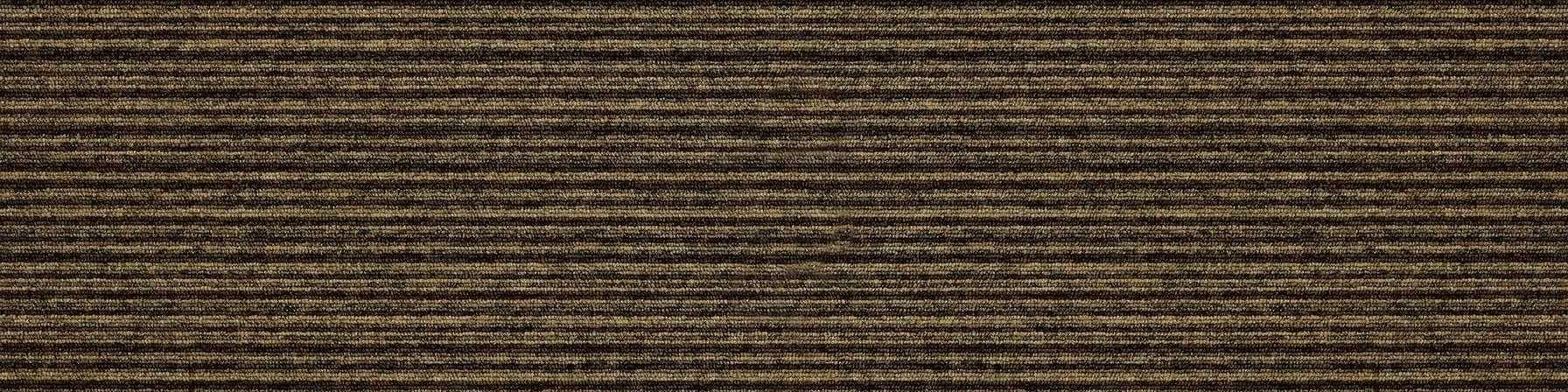 tivoli multiline 21204 polynesia beige carpet plank