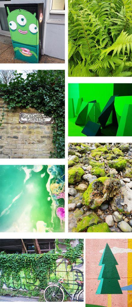COLOUR FOCUS | GREEN