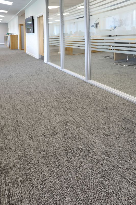 alaska multilevel loop carpet tiles at Rillatech