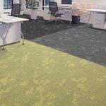 dapple carpet tiles dark nimbus moonlight glow golden hour